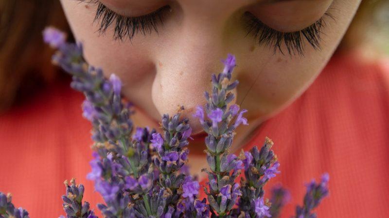 Príjemná vôňa v domácnosti – ako prevoňať celý byt?